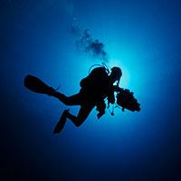 deepdiver01